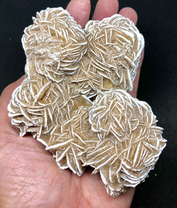 Desert Rose Gypsum FREE SHIPPING 332g - Higher Vibe Crystals