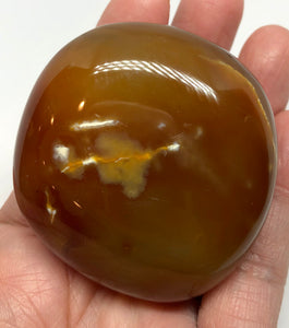 Agate Palm Stone from Madagascar 139g FREE SHIPPING - Higher Vibe Crystals