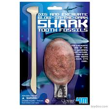 Shark Tooth Fossil Dig Kit