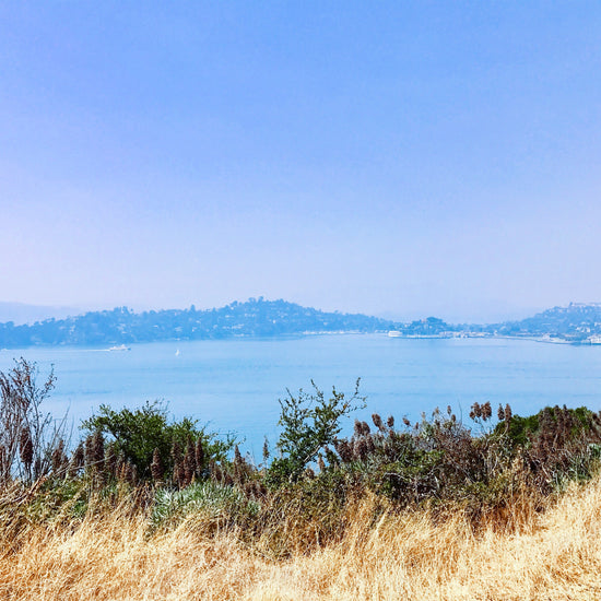 Angel Island Hike & BBQ