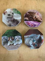 Cats Ceramic Magnet