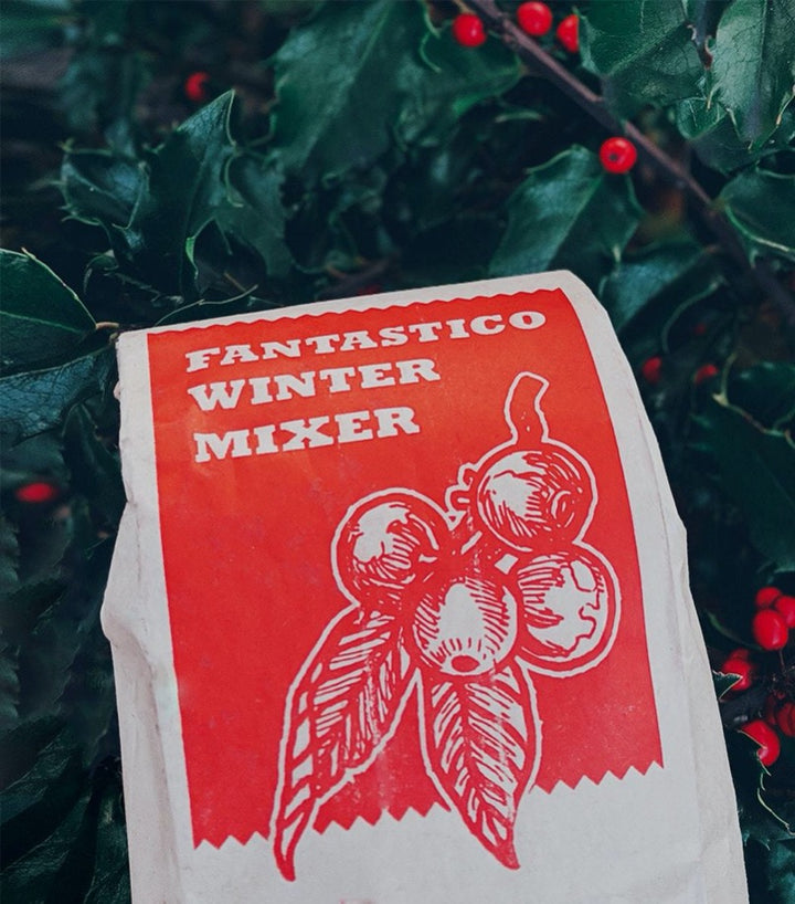 Fantastico Winter Mixer