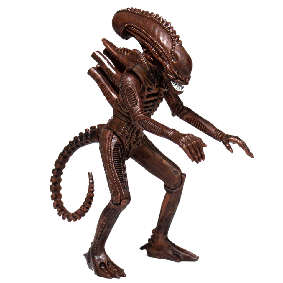 Super7 Aliens ReAction Alien Warrior B Dusk Brown 3.75 Inch Action Figure