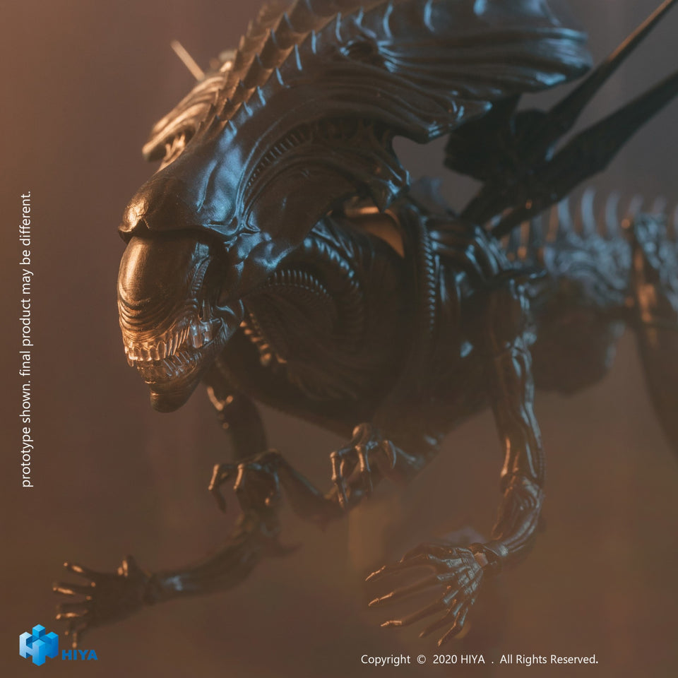 Hiya Toys PX Exclusive AVP Alien Queen 1:18 Scale Figure PRE-ORDER