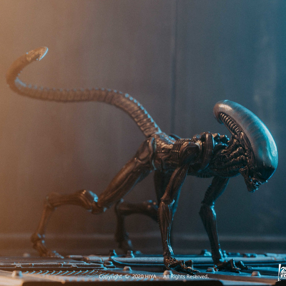 Hiya Toys PX Exclusive Alien 3 Dog Alien 1:18 Scale Action Figure PRE-ORDER