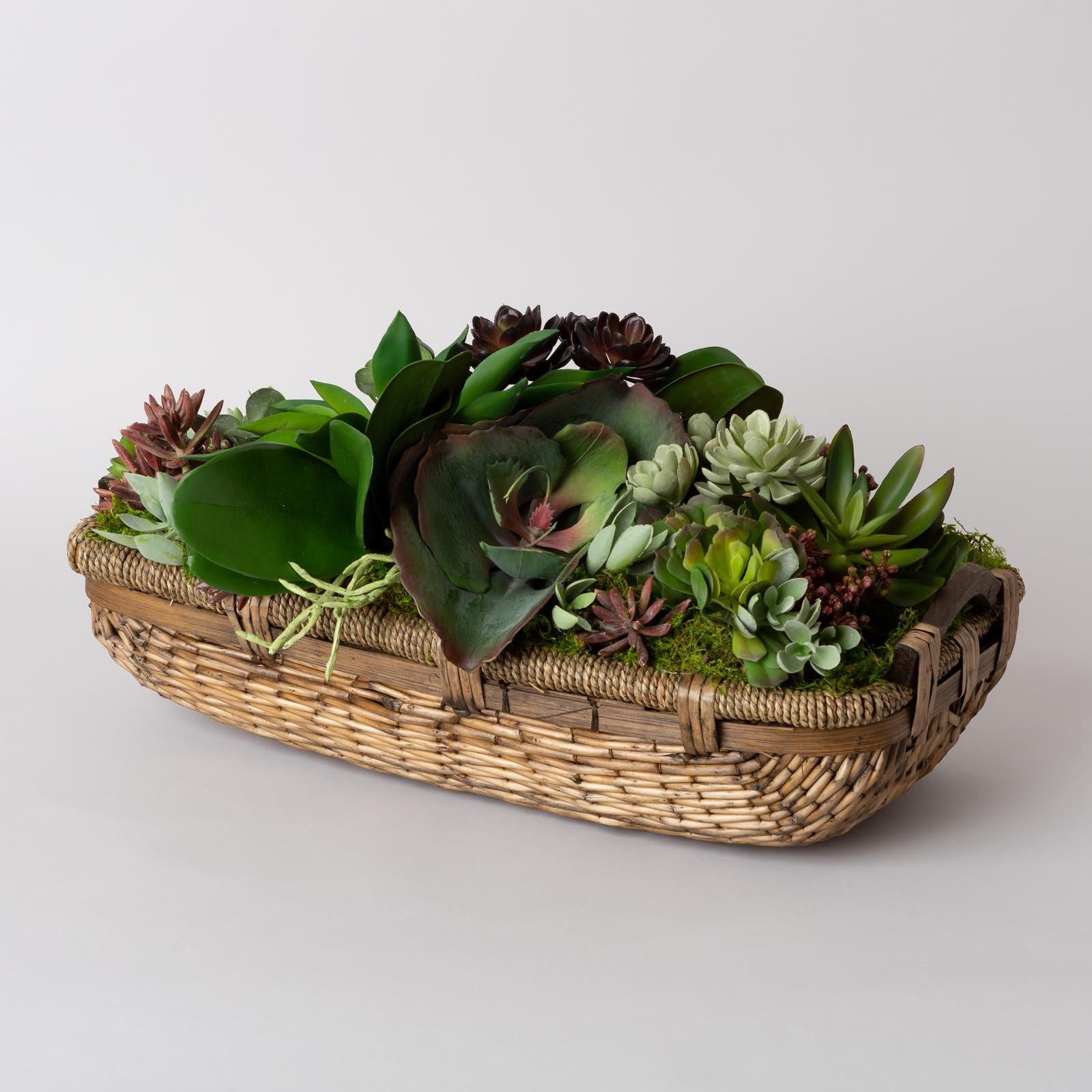 The Succulent Basket