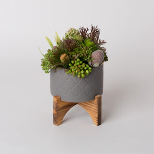 The Mini Planter