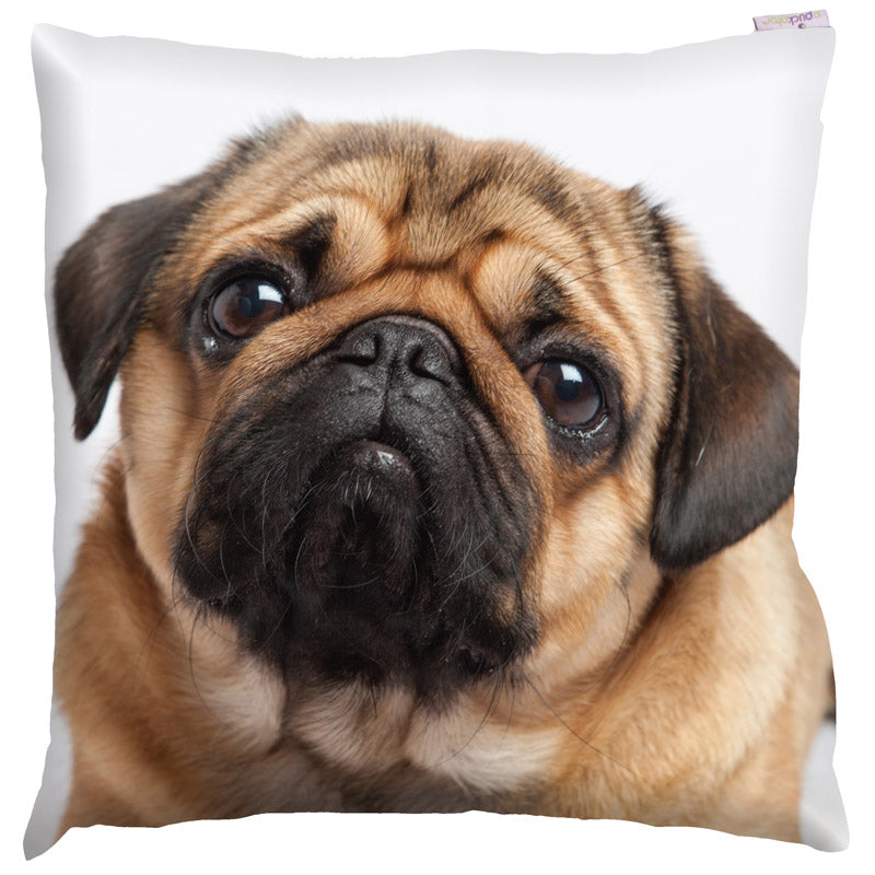 Pug Photo Design Cushion - Modern Cushion