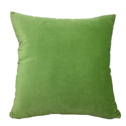 Velvet Velour Natural Green Cushion - Modern Cushion
