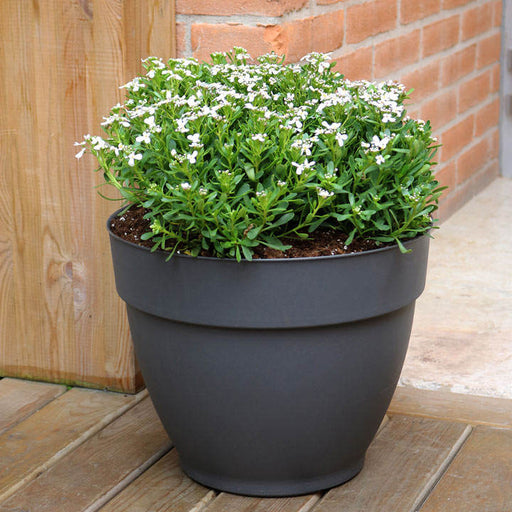 Ninfea Water Reservoir Planter 30cm - Anthracite (Pair)