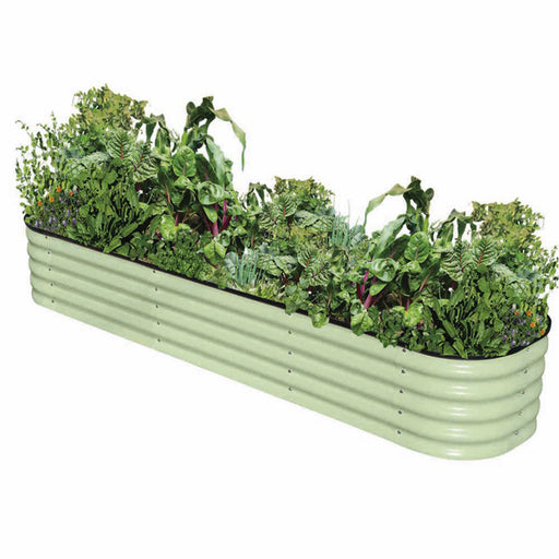 Original Veggie Bed Sage