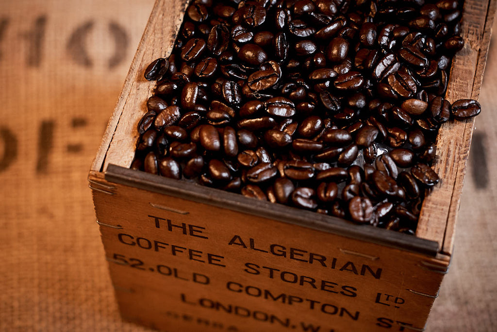 COFFEE OF THE MONTH - OCTOBER - VELLUTO NERO
