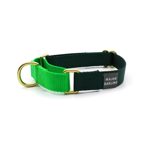 Martingale Collar - Evergreen + Lime (LG)