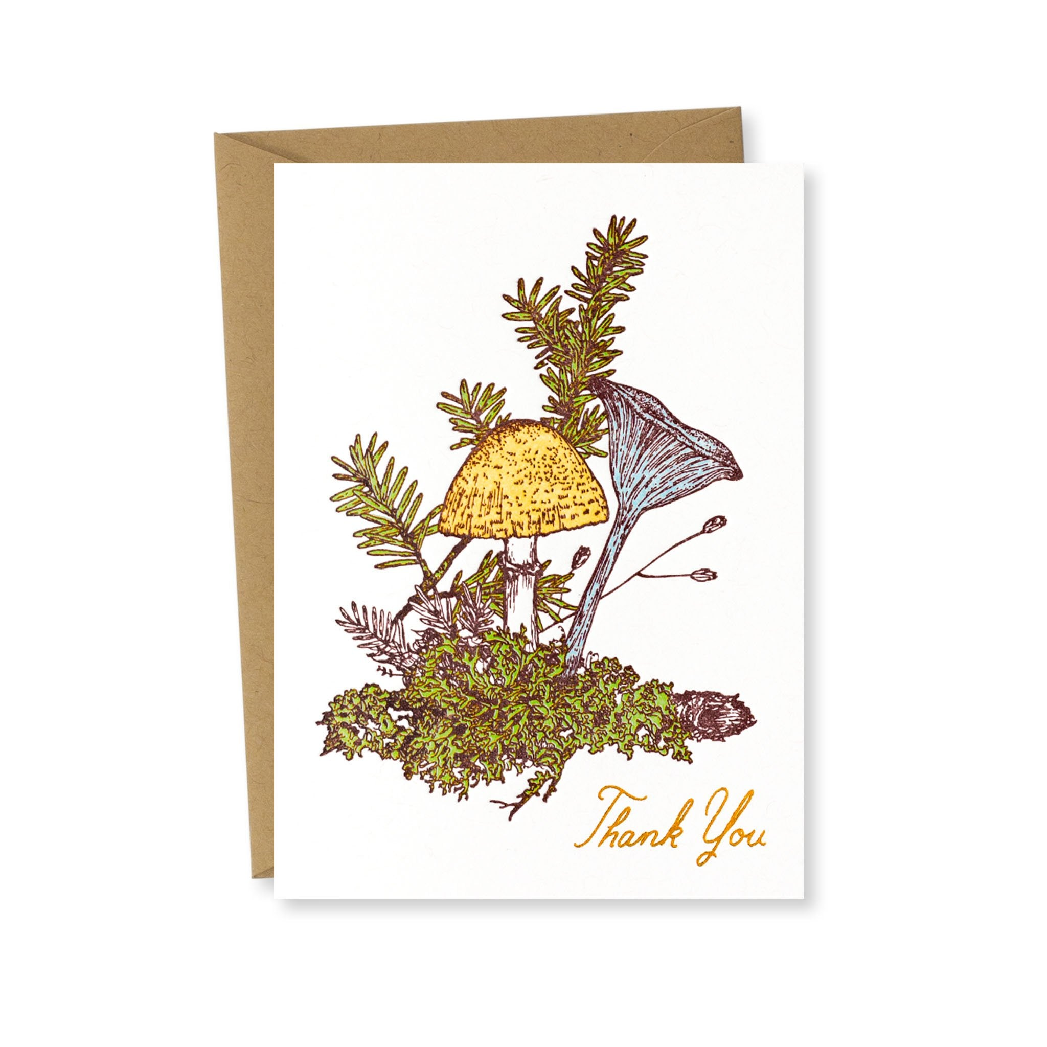 Thank You Card: Mushrooms