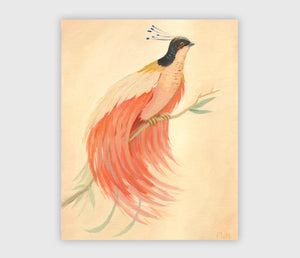 ART PRINT: Bird of Paradise - Emily Winfield Martin