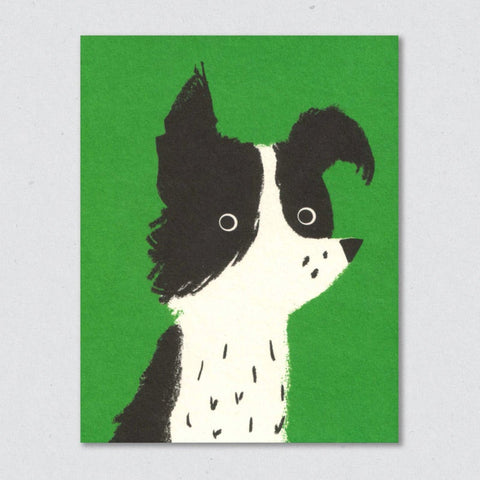 Greeting Card: Dog (Border Collie)