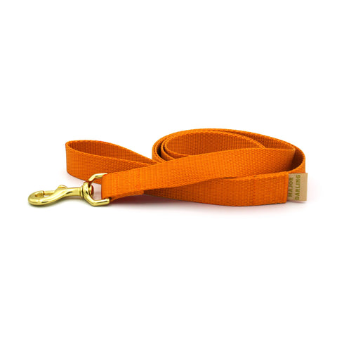 Dog Leash - Orange