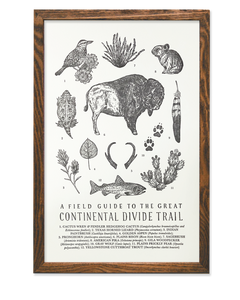 ART PRINT: Continental Divide Trail Field Guide - by The Wild Wander