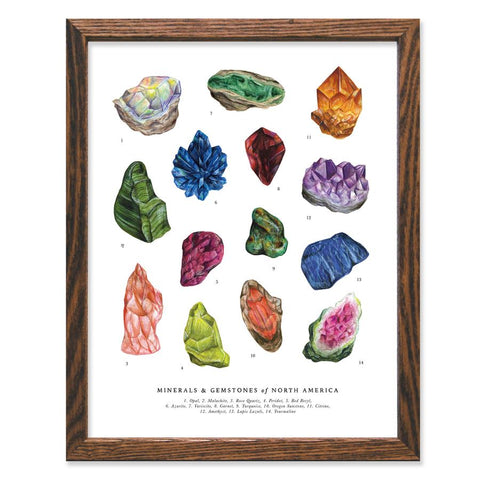ART PRINT: Gems & Minerals of North America - by The Wild Wander