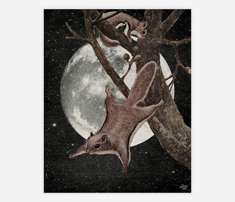 ART PRINT: Squirrel Away - The Galek Sea