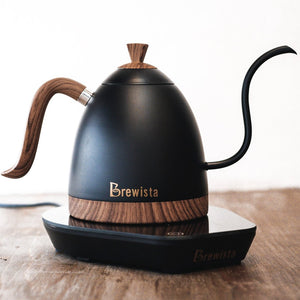 Brewista Artisan 600ml Gooseneck Variable Kettle – Matte Black