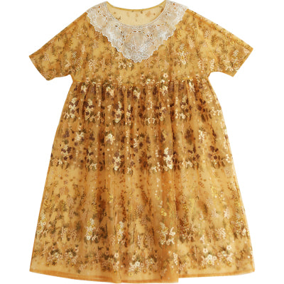 Organza Shimmer Casual Dress