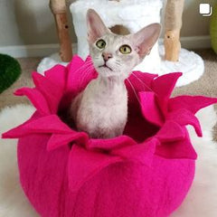 Pink Flower Bed Cat Cave Wool