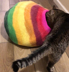 Rainbow Cat Cave Felted Wool