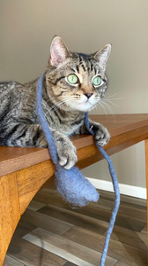 wool-cat-toy