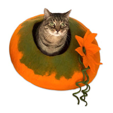 Load image into Gallery viewer, NEW! PUMPKIN Cave