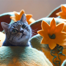 Load image into Gallery viewer, pumpkin cat house