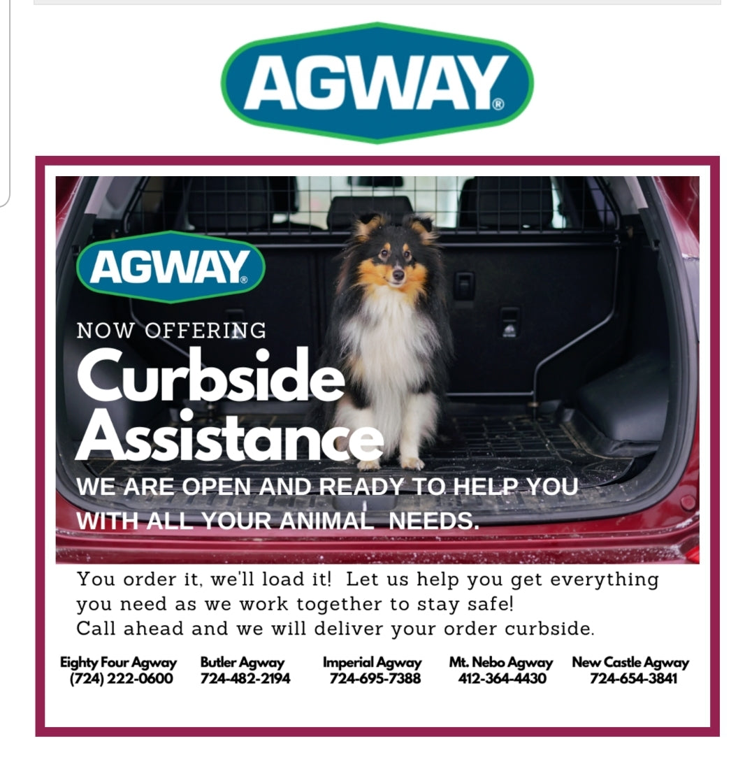 Curbside Assistance