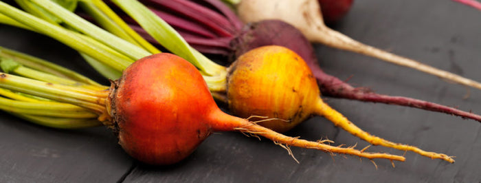 Guide to starting root vegetable seeds by Espoma