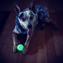 Load image into Gallery viewer, Chuckit Glow Ball UK Dog Toy