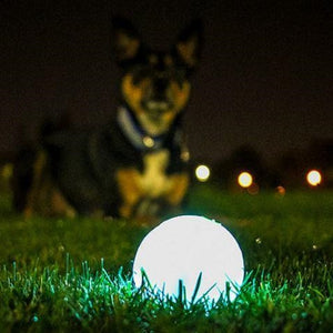 Chuckit Glow Ball UK