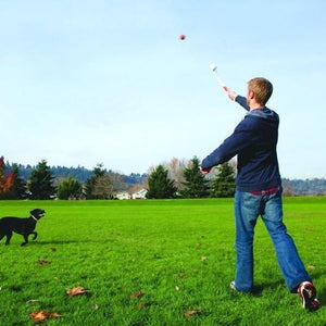 UK Chuckit Sport Dog Ball Launcher + Ultra Ball