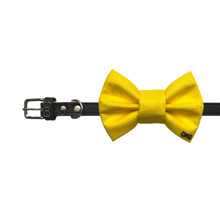 Load image into Gallery viewer, Funky Dog Large Yellow Bow Tie