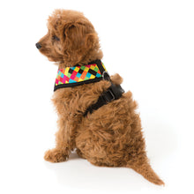 Load image into Gallery viewer, FuzzYard 1983 Retro Dog Harness