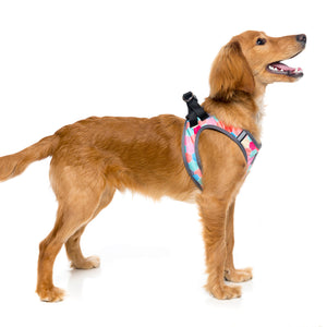 FuzzYard Hive Step In Dog Harness