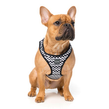 Load image into Gallery viewer, FuzzYard OkOk Step In Dog Harness