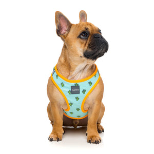 FuzzYard Tucson Step In Dog Harness