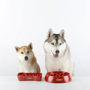 Inooko Red Bone Slow Feeder Dog Bowl