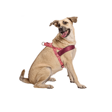 Load image into Gallery viewer, Morso Pink Think Norwegian Dog Harness