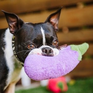 P.L.A.Y. Farm Fresh Aubergine Dog Toy