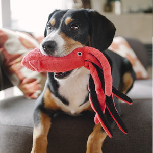 P.L.A.Y. Giant Squid Dog Toy