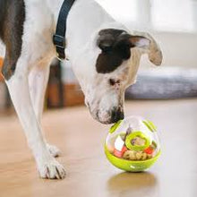 Load image into Gallery viewer, P.L.A.Y. Wobble Ball Interactive Dog Toy