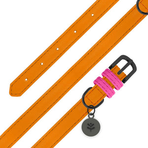 Sotnos Colour Block Orange & Pink Collar