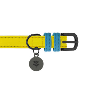 Sotnos Colour Block Yellow & Blue Collar