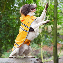 Load image into Gallery viewer, Sotnos Yellow Sunshine Dog Raincoat