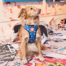 Load image into Gallery viewer, Zee Dog Atlanta Mesh Harness